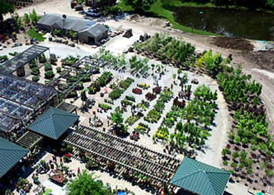 Aerial view of trees and shrubs