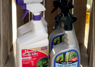 Japanese Beetle Insecticide